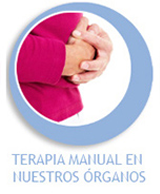 TERAPIA MANUAL EN NUESTROS ORGANOS